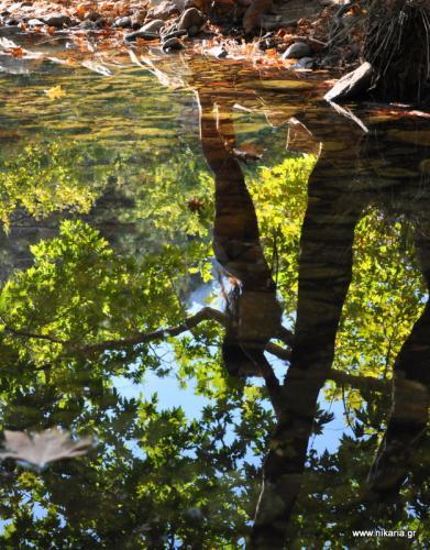 Καθρεφτίζεται στις λίμνες Τρέφεται και ζει με μνήμες